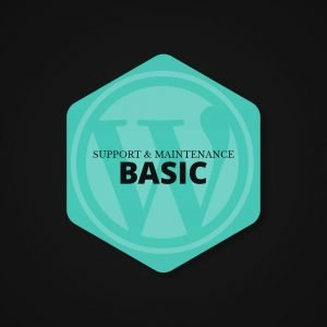 Wordpress Support & Maintenance Plan (Basic)